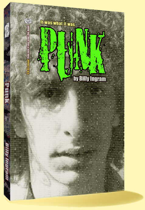 Punk Book / Punk Rock Book by Billy Eye