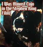 I was almost Cujo in the Stephen King Fim